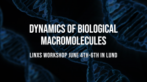 Dynamics of Biological Macromolecules