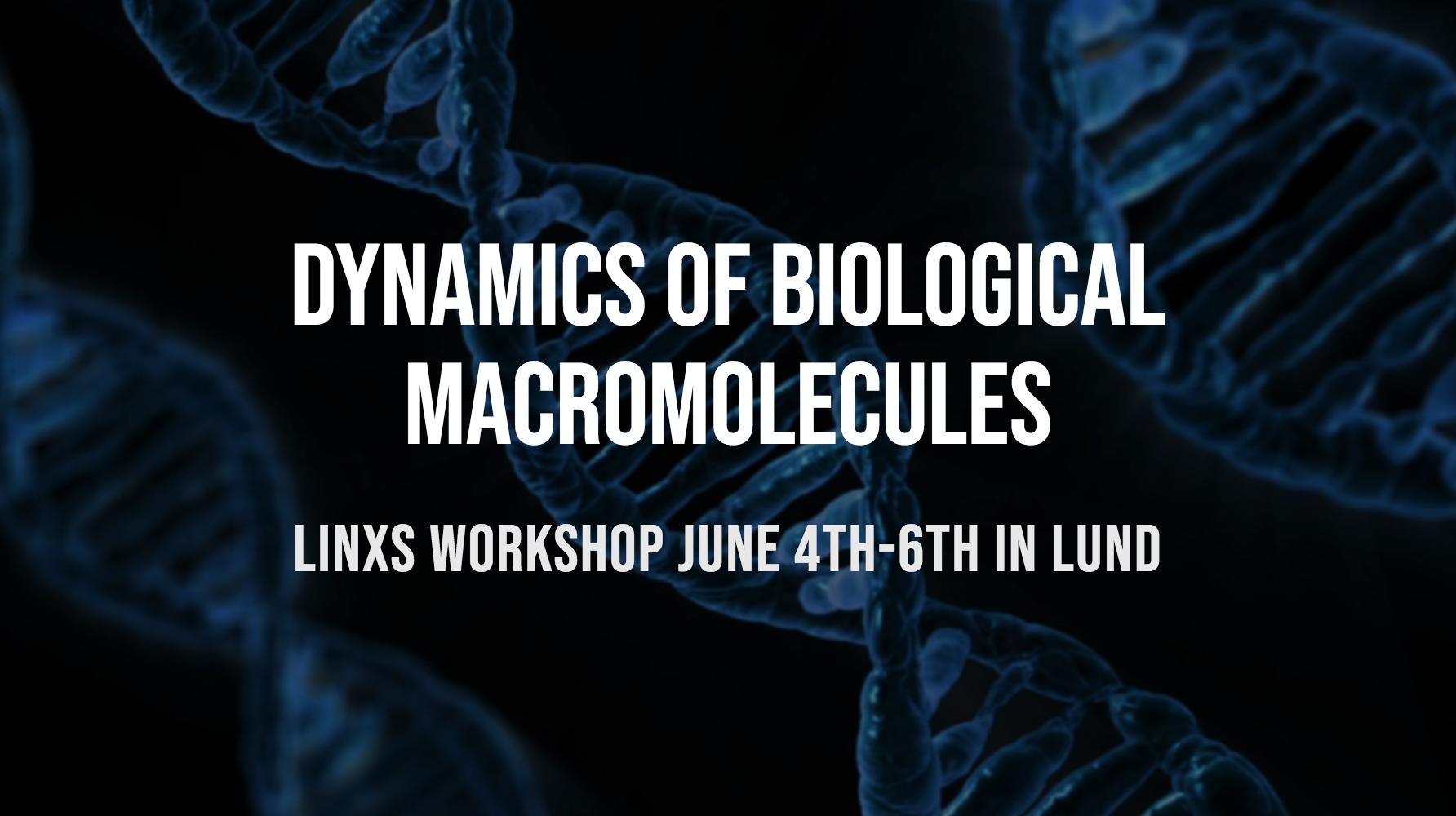 Dynamics of Biological Macromolecules