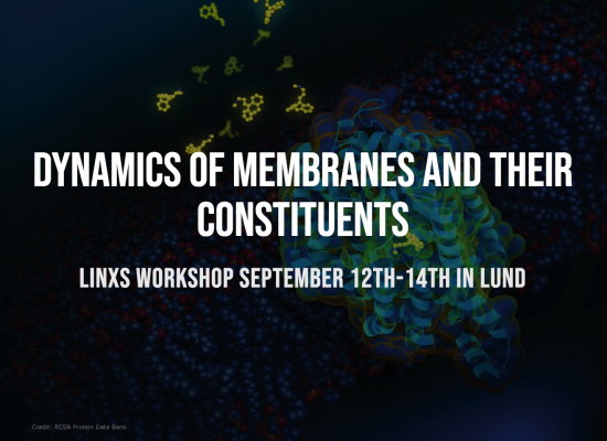Workshop - Dynamics of membranes and their constituents