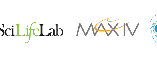 The logos of The Swedish Research Council, SciLifeLab, MAX IV, and ESS.